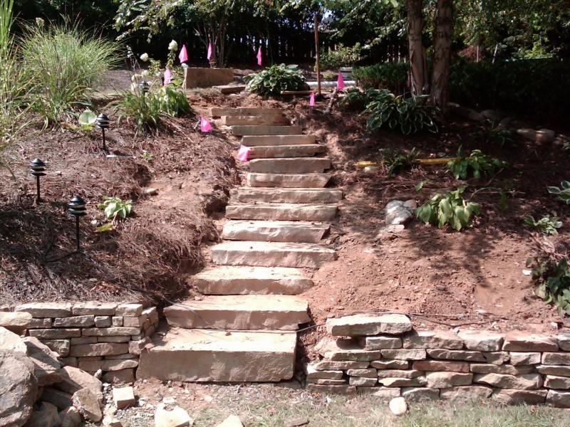 naturaltone_steps